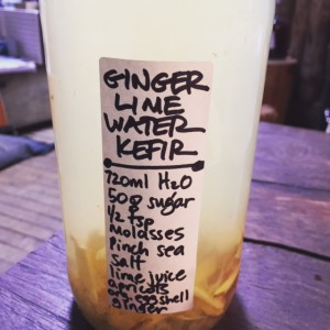ginger water kefir
